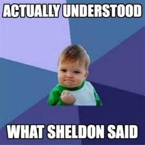 Hilarious Memes 2013 - sheldon cooper funny memes dump a day