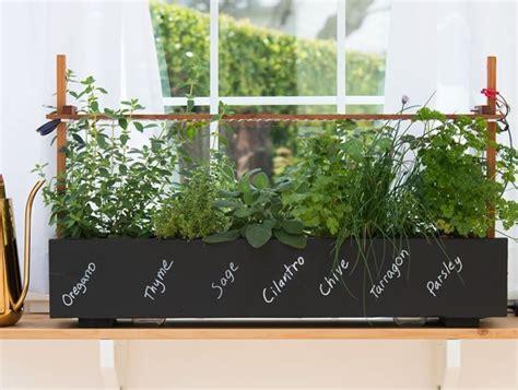 top garden trends   garden design