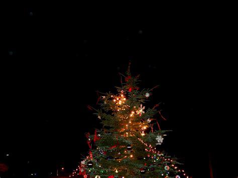 melissa kaylene lincoln city christmas tree lighting