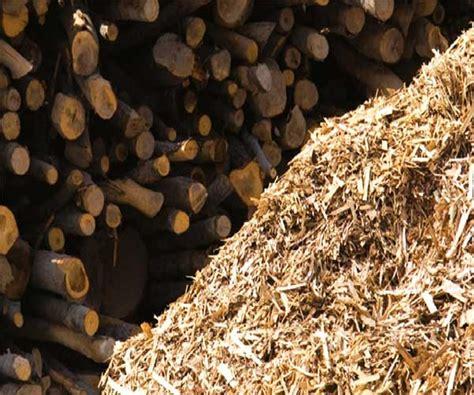 Lu Belajar Dari Kayu tidak hanya dari kayu sumber lignoselulosa juga bisa dari limbah lembaga ilmu pengetahuan