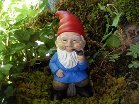 related keywords suggestions for smiling gnome garden gnome related keywords suggestions garden gnome