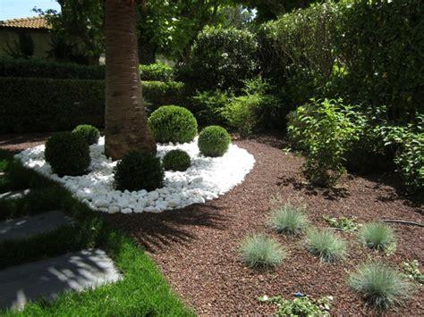 decorar jardin con plantas deserticas plantas ornamentales jard 237 n natural ideas preciosas