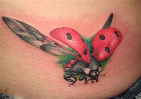ladybug tattoo meaning flying ladybug the coloring and underwings