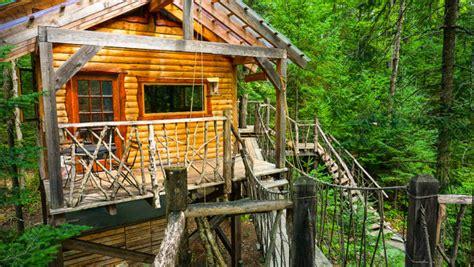 tiny tree house tiny tree house with hanging rope bridge
