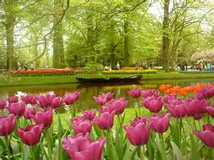 Keukenhof Flower Gardens Amazing Magazine The World S Largest Flower Garden Keukenhof The Netherlands