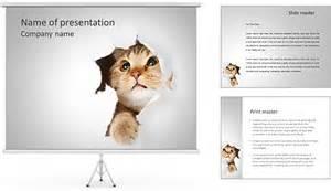 cat powerpoint template peaux de chat mod 232 les des pr 233 sentations powerpoint et