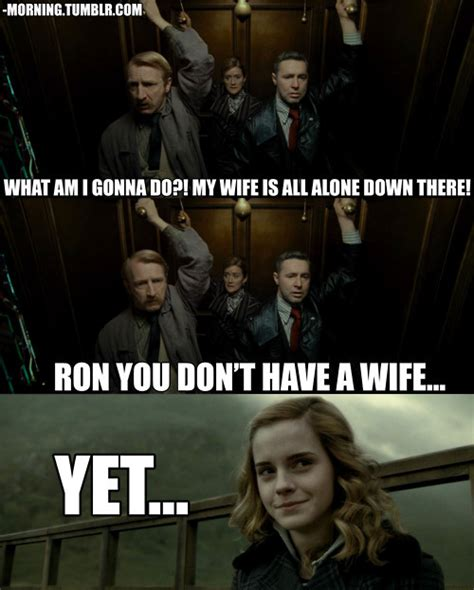 Hp Memes - funny harry potter joke ron hermione meme