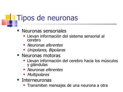 concepto de imagenes sensoriales wikipedia perspectivas teoricas iv