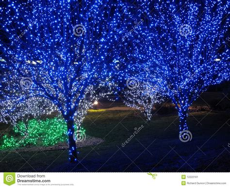 tree with blue lights blue tree pair stock image image of december