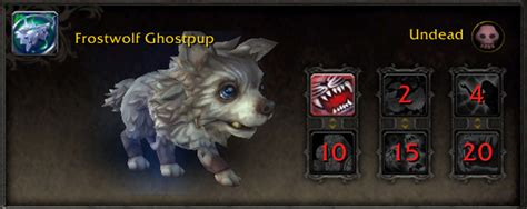 wow pug pet wod beta seven new pets pug costume safari hat update