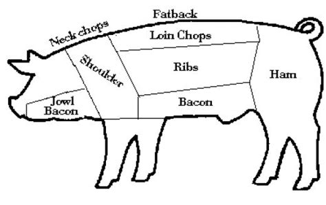 what part of the pig does bacon come from diagram butcher a pig diagram