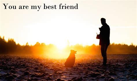 friend best friend best friends wallpapers wallpaper cave