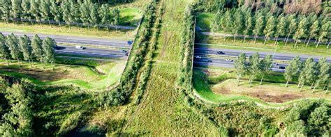 imagenes de hábitats naturales cursos de naturaleza fragmentaci 243 n de h 225 bitats y