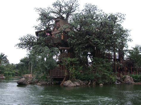 house trees file hkdl tarzan s treehouse jpg wikipedia