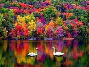autumn colors autumn fall beautiful colors