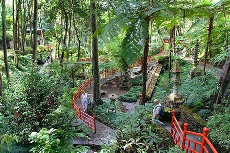madeira botanical gardens the monte palace tropical gardens is by far one of the