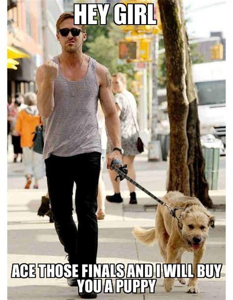 Ryan Gosling Finals Meme - 20 ryan gosling memes that every fan will love