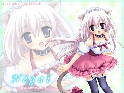 wallpaper cat girl anime cat girl wallpapers 62 wallpapers hd wallpapers