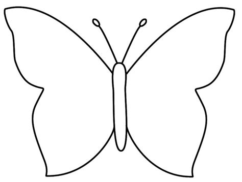 template drawing butterfly outline coloring pages butterfly