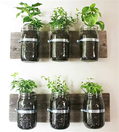Diy Herb Gardens Perfect For Small Spaces Retirement Jar Herb Garden Wall