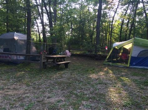 Cheap Cabins In Wisconsin Dells by Dells Timberland Cing Resort Updated 2016 Cground