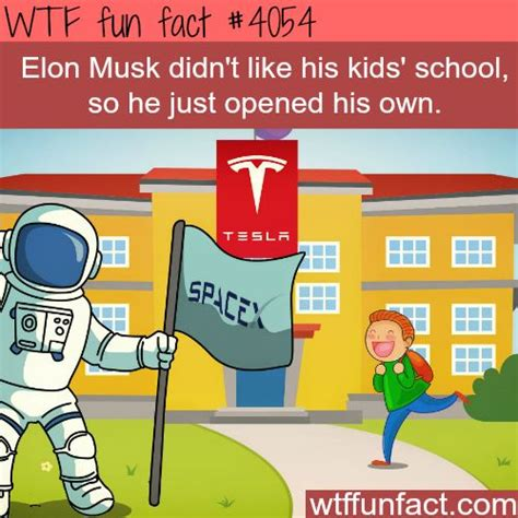 elon musk undergraduate gpa 17 best images about wtf facts on pinterest interesting