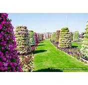 Pin Most Beautiful Flower Gardens In The World Vwgfvopn On Pinterest