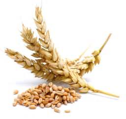 how you eat your food can resolve your gluten intolerance jivita ayurveda