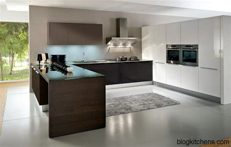 Euro Design Kitchen | european kitchen cabinets pictures and design ideas