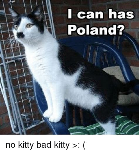 Bad Kitty Meme - 25 best memes about i can has poland i can has poland memes