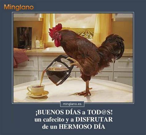 Imagenes Chistosas De Buenos Dias Para Los Amigos | frases de buenos d 205 as simp 193 ticas