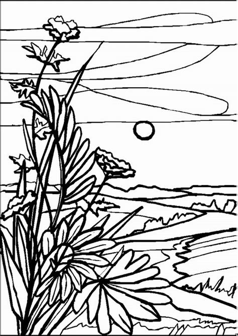 coloring pages adults landscapes landscape coloring pages for adults google search