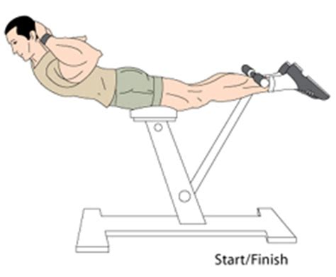 hyperextensions without bench hyperextensions and reverse hyperextensions exercise for back