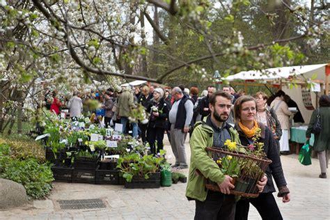 staudenmarkt botanischer garten botanischer garten fr 252 hlings staudenmarkt in berlin