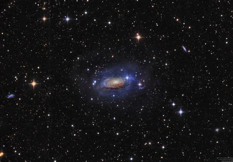 sunflower galaxy the sunflower galaxy fuzzy photos