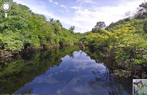 rainforest google street view