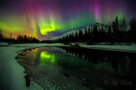 Can You See The Northern Lights In Alaska by Alaska Sky Photos Skies