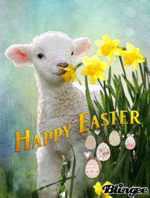 lamb happy easter quote pictures   images  facebook tumblr pinterest  twitter