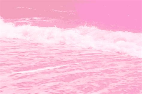 pink gifts pink sea gif