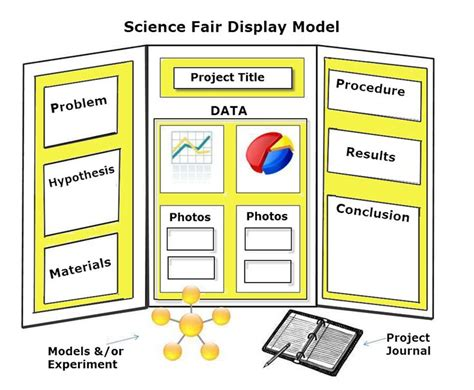 science fair project display board eyecatching presentation boards