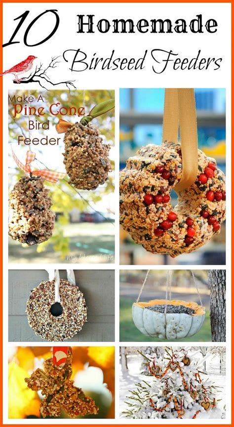 best 25 bird ideas on best 25 bird feeders ideas on bird