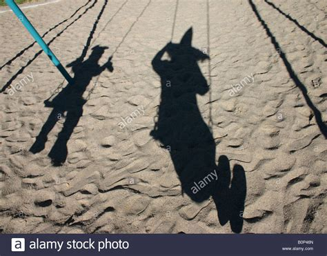 shadow swing shadow of parent and child on swing wearing halloween