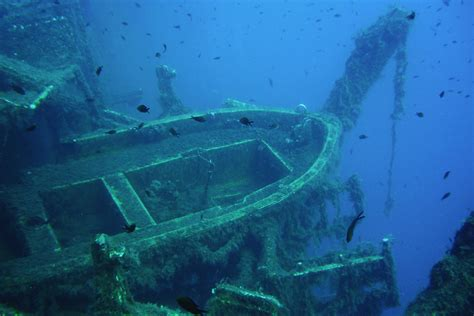 zenobia dive interesting facts about cyprus explore mediterranean