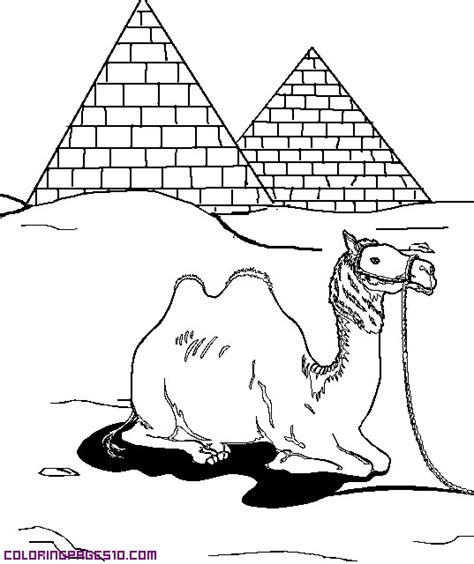 coloring pages egyptian pyramids a camel and pyramids
