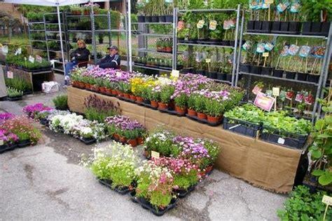 fiera fiori esposizione piante e fiori ad isola d asti 2008fiera