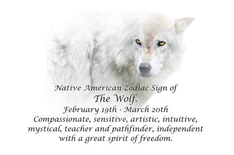 Animal Shower Curtain Native American Zodiac Sign Of The Wolf Photograph By