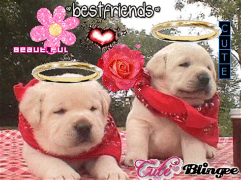 bff puppies bff puppies picture 59114779 blingee