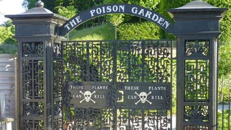 Poison Garden by Alnwick Poison Gardens Uk Tourist Attraction That Could