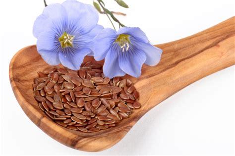 come utilizzare i semi di lino in cucina come utilizzare in cucina i semi di lino tomato