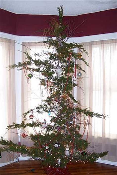 ugly christmas tree yikes no deposit forum